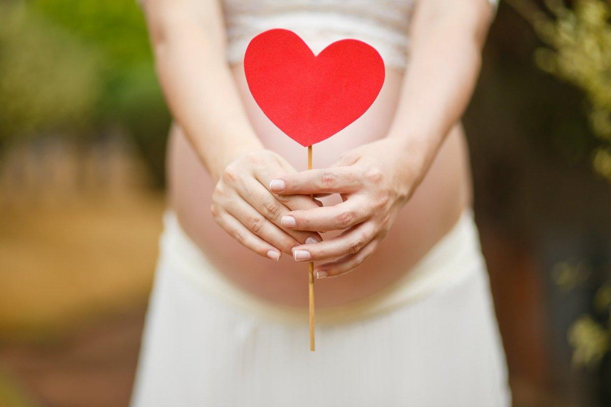 pregnant-woman-1910302_1920
